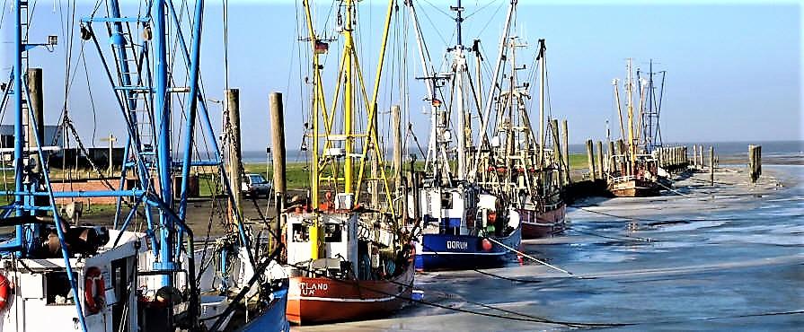 Kutterhafen in Dorum-Neufeld vom02.02.2014
