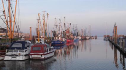 Der Kutterhafen von Dorum-Neufeld