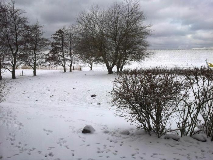 Cappel-Neufeld im Winter