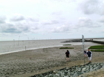 Die weite Nordsee in Spieka-Neufeld erleben