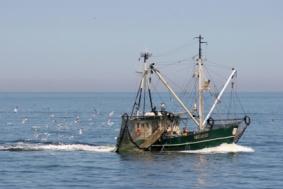 Kutter in der Nordsee auf Fischfang