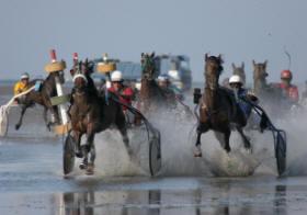 Wattrennen in Cuxhaven Duhnen in der Nordsee bei Ebbe